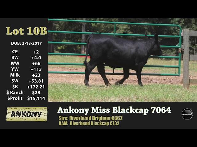 Ankony Lot 10B