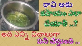 raavi aaku kashayam preparation | raavi aaku uses benefits and side effects | state tv