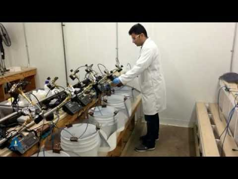ALS - Winnipeg Laboratory