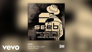 Seeb - What Do You Love (Jordan XL Remix) ft. Jacob Banks