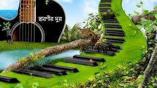 Hari Naam Diye Jagat Matale Amar Ekla Nitai - Bengali Folk Song