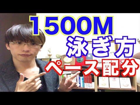 水泳 1500M 泳ぎ方 【ペース配分について】