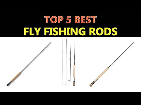 Best Fly Fishing Rods 2020