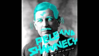Pele & Shawnecy - The Guru (Original Mix) [Snatch! Records]