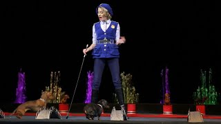 Woman and Dogs performance on Circus