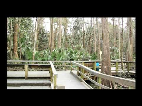 Promotional video clip for Jackson County, Florida- 'Unspoiled' HD old