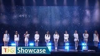 우주소녀(WJSN), '1억개의 별(star)' Showcase stage (WJ STAY) [통통TV]