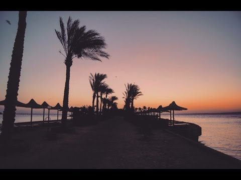 Full of Love - Travel to Egypt | 2016 ♡
