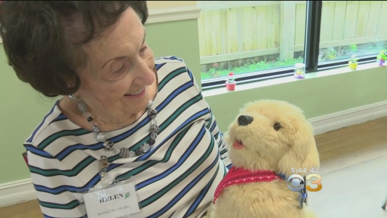 Robotic Pets Serving As Friends, Therapy Aids To Growing Elderly  Population, Scientists Say