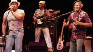 Neville Brothers /  What's Going On