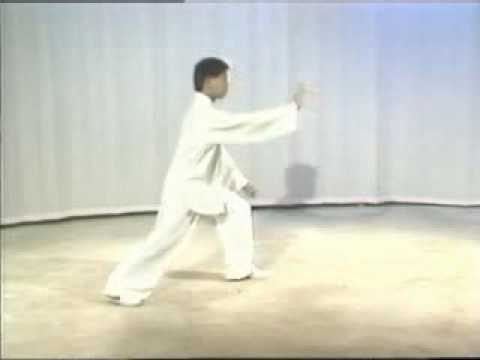 Yang Taiji, Master Yang Jun, 1 part, 103 form