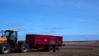 Harvesting Caiplie Near Crail East Neuk Of Fife Scotland September 15th
