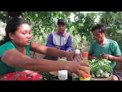 Tourists Show How To Do Food Fruit Papaya Jhak Two Women eating delicious