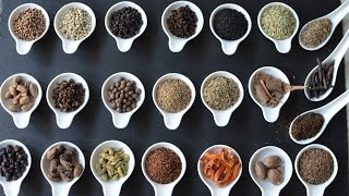 A BEGINNERS GUIDE TO USING SPICES EP1 Mp3