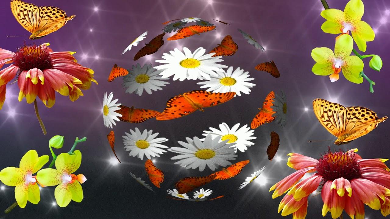 Видеозаставка, футаж цветы и бабочки - YouTube