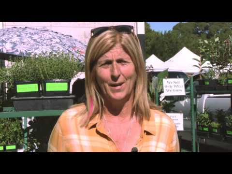 Brigitte Moran endorses Rep. Jared Huffman on Change Politics