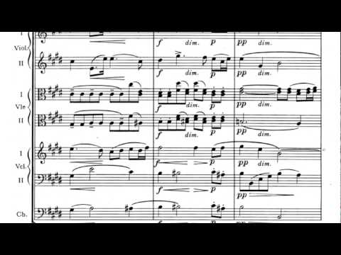 Antonín Dvořák - Serenade for Strings in E Major Op.22 (w/score)