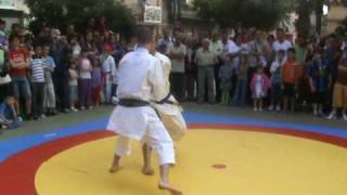 seiken karate enna : kanku dai - bunkai