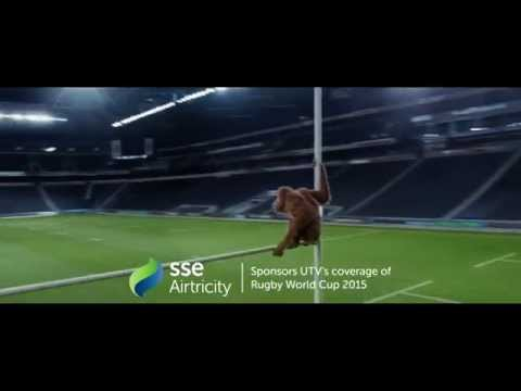SSE Airtricity, UTV Rugby World Cup, England