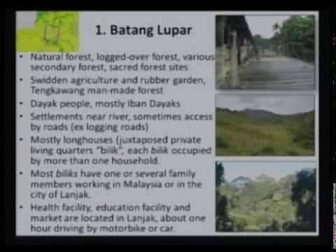 Borneo Sumatra Sentinel Landscape
