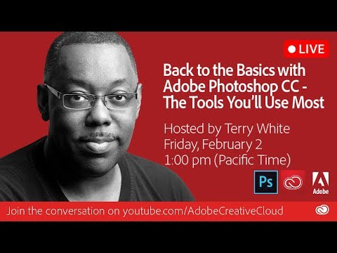 Back to the Basics with Adobe Photoshop CC - The Tools You'll Use Most