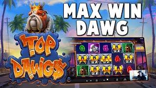 TOP DAWG$  25,000X MAX WIN (NO BONUS BUY)