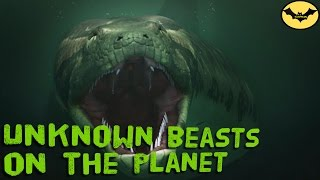 World alert! 5 Real Monsters Inhabit The Earth.