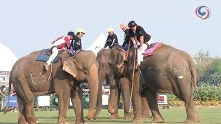 Anantara King's Cup Elephant Polo 2016