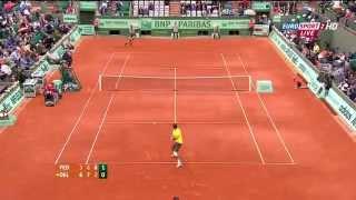 Federer vs Del Potro - Roland Garros 2012 QF Highlights