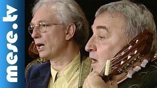 Kaláka - Radnóti Miklós: Alszik a szív (koncert részlet, gyerekdalok) | MESE TV