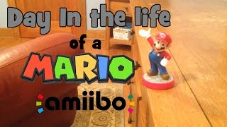 Day in the Life of a Mario Amiibo