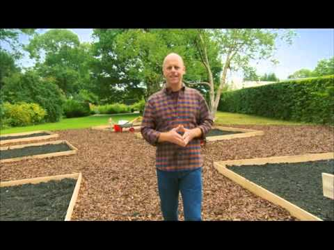 Смотреть все серии альтернативный сад