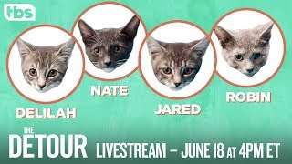 The Detour: If They Were Kittens Livestream | The Detour Premieres Tonight | TBS