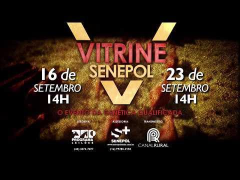Inst Vitrine Senepol 2017