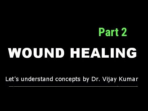 Download Wound Healing Pathology | Primary Union Wound Healing | Delayed Wound Healing | Wound Healing Phases