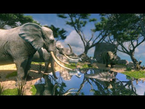 African Savannah Ambient Sound (1 Hour) Nature Sounds ASMR | Sonido Ambiental De La Sabana Africana