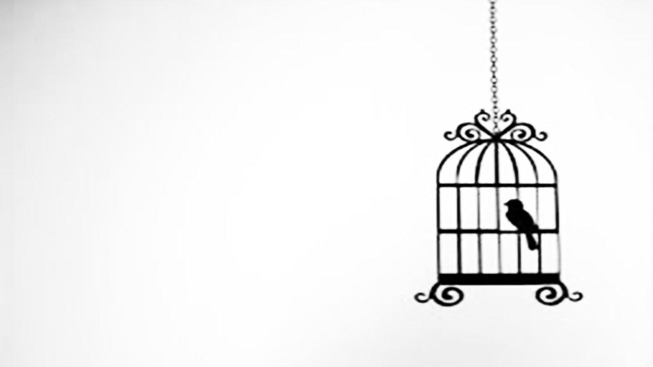 aprenda a desenhar uma pássaro tumblr youtube