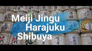 【Walking in Tokyo with WJT】Part 1 : Meiji Jingu, Harajuku, and Shibuya