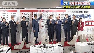 改憲勢力3分の2は困難 与党は改選過半数を確保(19/07/22)