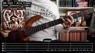 THE CULT - Wild flower (bass cover w/ Tabs)