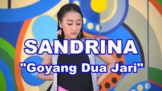 Gambar cover GOYANG DUA JARI SANDRINA DANGDUT REMIX