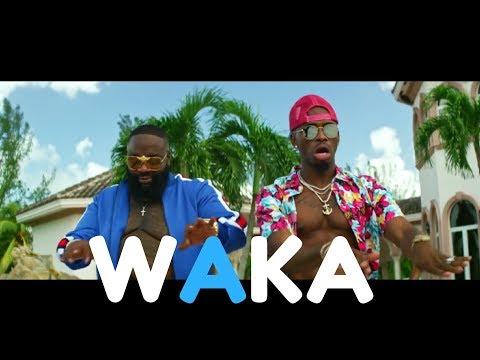 Diamond Platnumz featuring Rick Ross - Waka - Uchambuzi wa Audio na Video