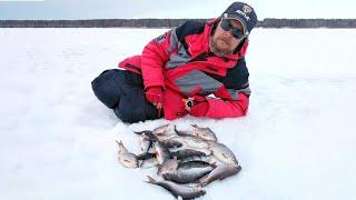 Искали СОРОГУ нашли ПЛОТВУ С безнасадкой по последнему льду на водохранилище