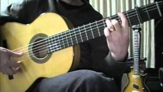Flamenco Guitar - Taranto Falseta 3 - Miguel Aragón.m4v