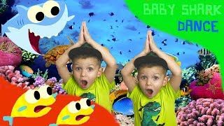BABY SHARK DANCE Sing and Dance Animal Songs Songs for Children