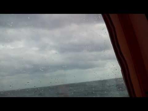 ホエールウォッチング沖縄・那覇発,大揺れの船