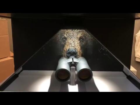 Oculus Phaze Binoculars