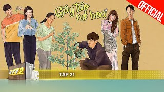 Cây Táo Nở Hoa Tập 21 Full HD