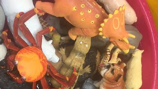 Learn Names of Sea Animals, Dinosaurs and Zoo Animals and Farm Animals Toys for Kids
