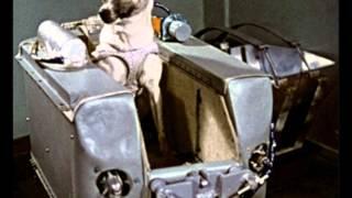 Sputnik 2 and Laika